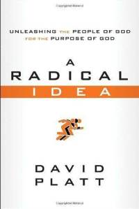 a-radical-idea-unleashing-people-god-for-purpose-david-platt-paperback-cover-art