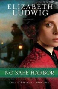 no-safe-harbor-elizabeth-ludwig-paperback-cover-art